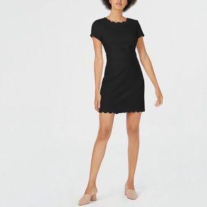 NWT MAISON JULES Scalloped Sheath Dress #NN11